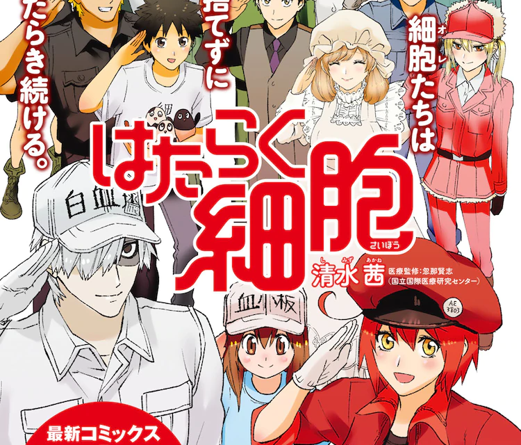 """""""Cells at Work!"""" Ends Serialisation Today, Multiple Spin-offs Announced!"""