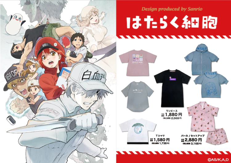 """Sanrio Releases """"Cells at Work"""" New Collab Line in Japan!"""